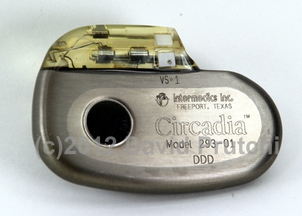 Intermedics Circadia central-venous-temperature-sensing rate-responsive pacemaker