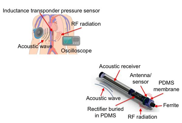 Bass-driven cantilever power source for implantable devices developed by Purdue University